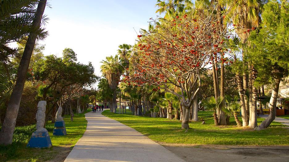 Parque-Morelos