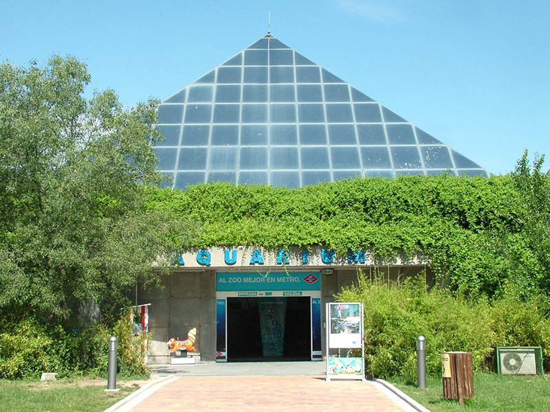 aquarium-madrid