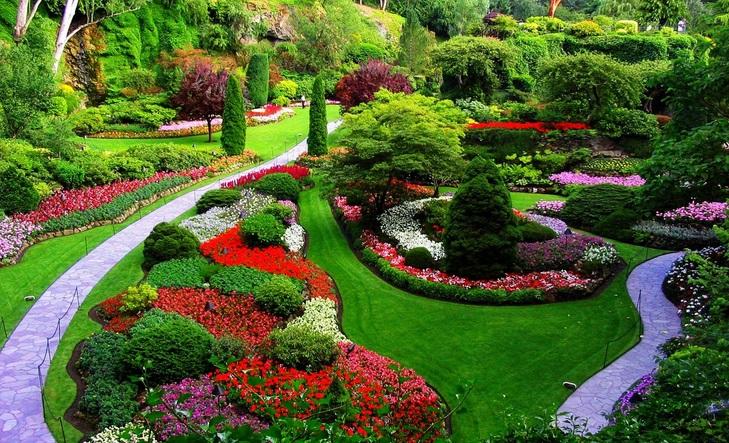 26. Visitar el Jardín Botánico de Brooklyn