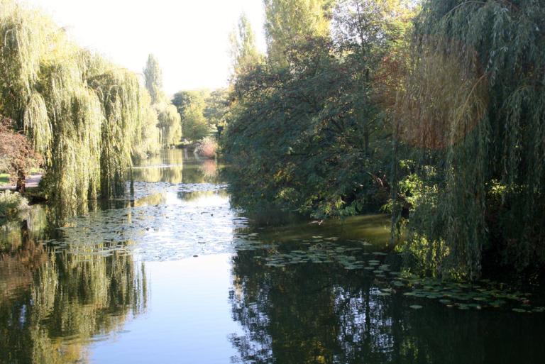 5. Parque La Ciudadela