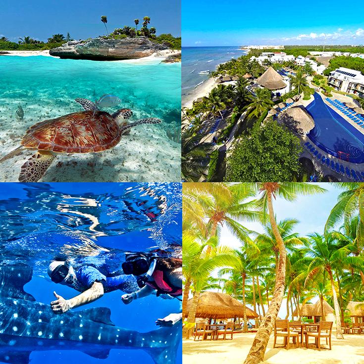 525f6cd31636e Las 20 MEJORES cosas que hacer y ver en Playa del Carmen