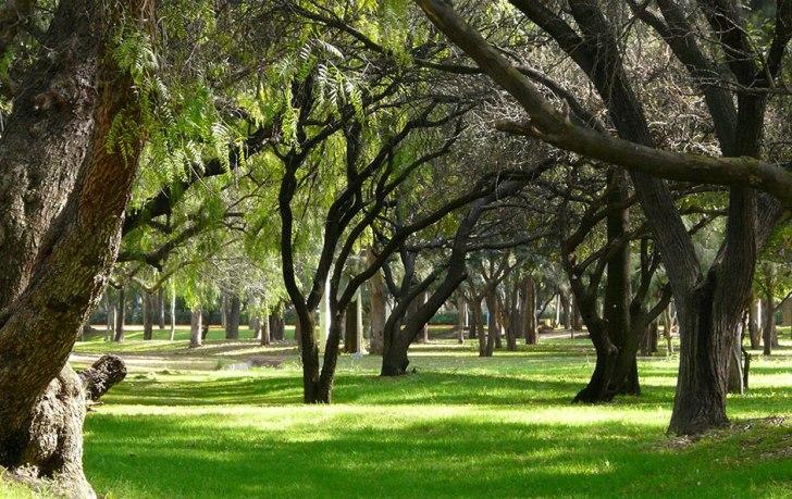 9. Parque Tangamanga I