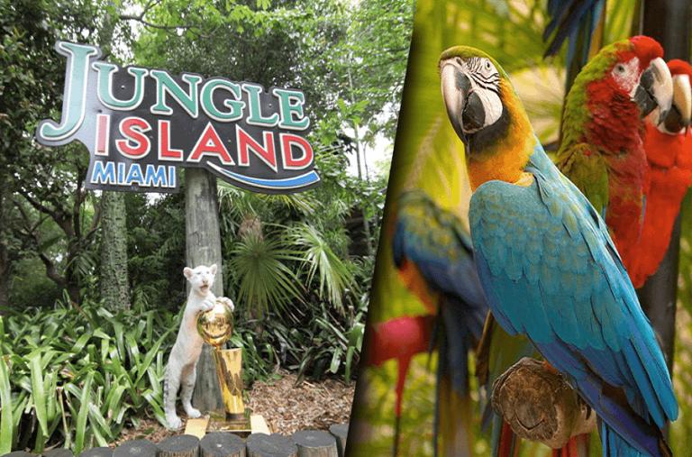 1. Jungle Island
