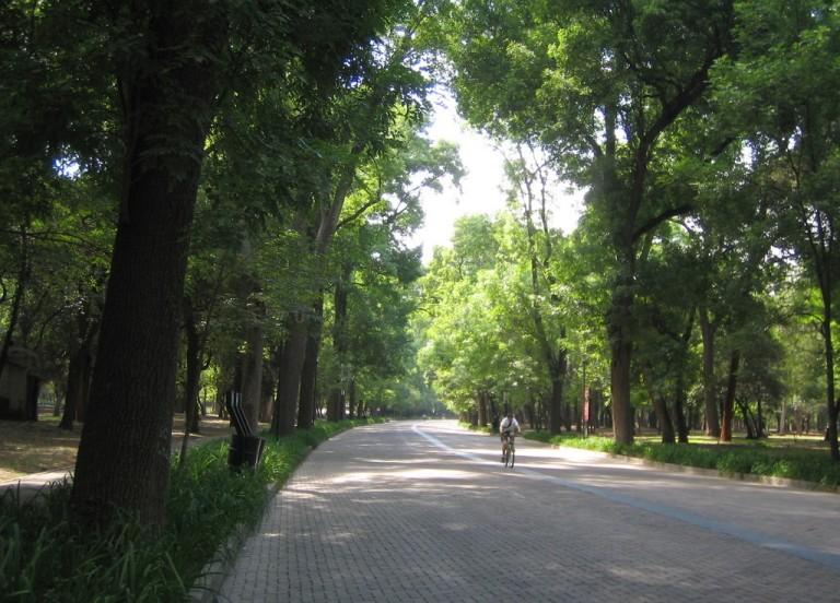 1. Recorrer el Bosque de Chapultepec