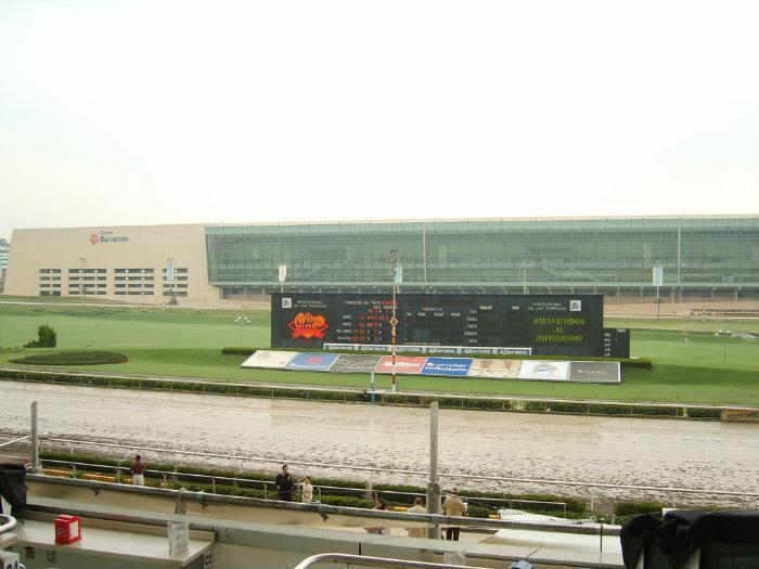 19. Carrera de caballos en el Hipódromo