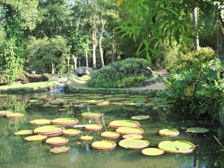 19. Jardín Botánico