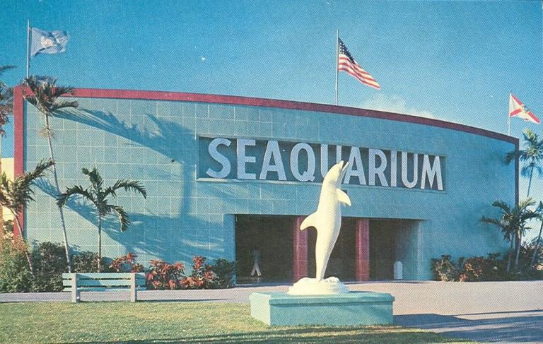 4. Miami Seaquarium