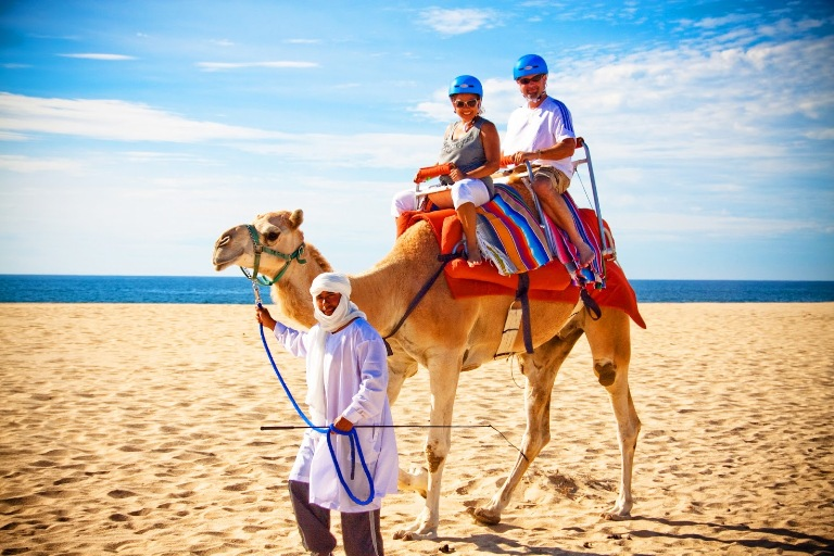 5. Tour de Camellos
