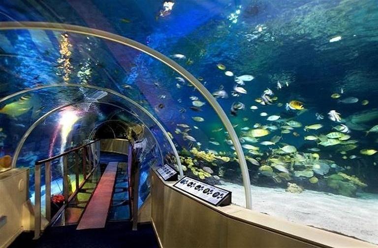 13. Sea Life London Aquarium
