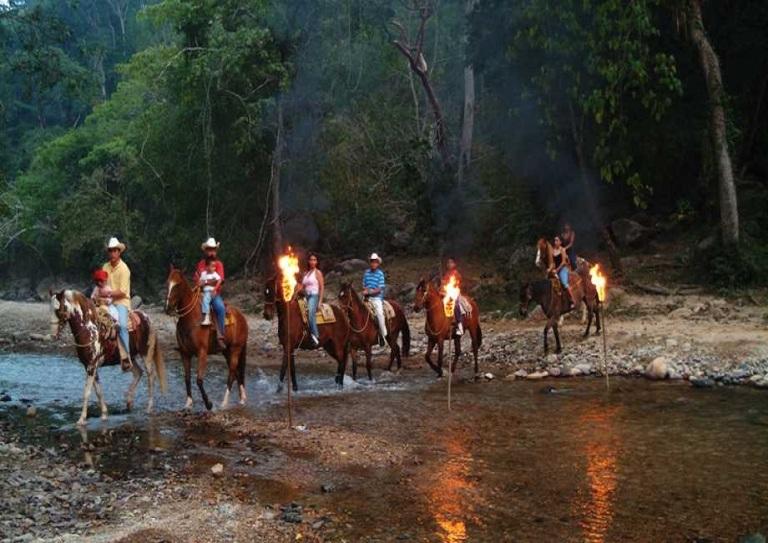 6. Has paseos a caballo