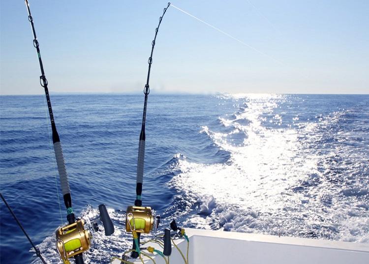 6. Tour de pesca de profundidad