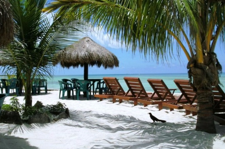 6. Visita Playa Palancar