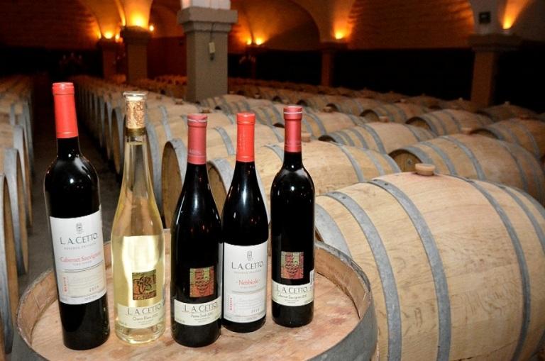5-cuales-son-sus-principales-vinos
