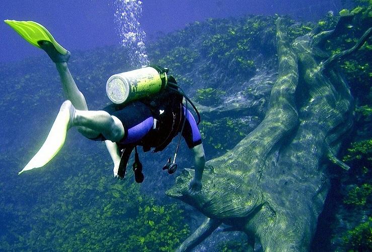 9. ¿Cómo es el buceo en la laguna