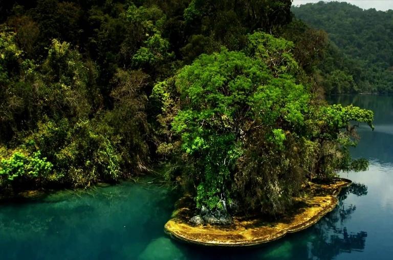 14-que-hay-en-el-parque-nacional-canon-del-sumidero